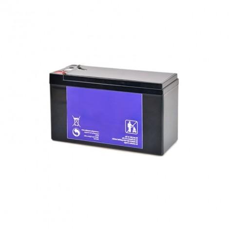 Batterie pour portique de détection de métaux Vigicom® PS-980