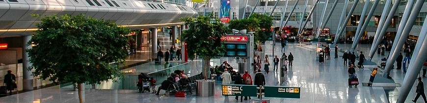 Walkthrought and handheld metal detectors | Vigicom